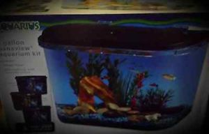 Aquarius 5 Gallon Panaview Aquarium Kit