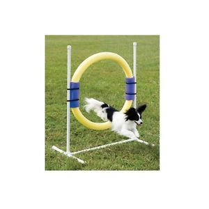 PetSafe Agility Ring Jump for Dogs Lots of Fun Training Together
