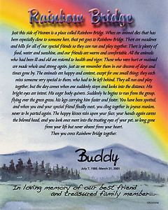 "Personalized ""Rainbow Bridge"" 8x10 Pet Memorial Poem Ready to Frame SKU 977 1"