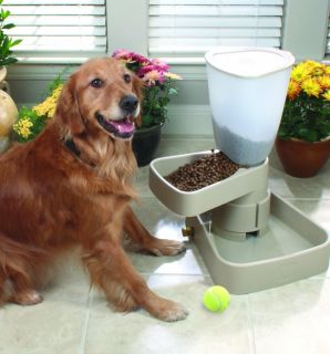 Large Automatic Ant Proof Dog Cat Pet Feeder Dish Bowl