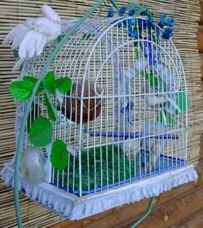 Antique Vintage Art Deco Crown Canary Parakeet Bird Cage w Glass Feeder Brass