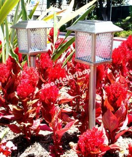 4 Outdoor Stainless Steel Square Solar Landscape Lights