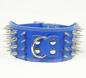 Spiked Studded Dog Collars 3inch Wide Blue Leather Dog Collars Pitbull Terrier