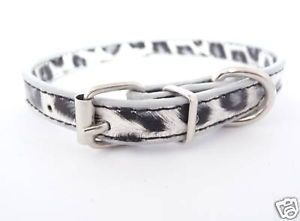 Snow Leopard Print Designer Dog Cat Collar Collars