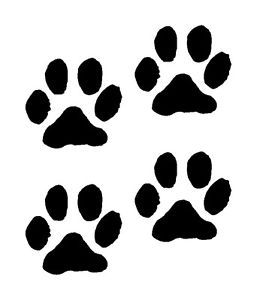 Paw Prints Dog Cat Vinyl Decals Stickers 4 Set Puppy Cute Girl Animal Tracks Car