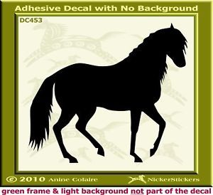 Paso Fino Custom Horse Window Trailer Decal Sticker 453