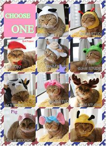 New Funny Pet Cat Costume Hat Animal Type Halloween Costume Hat for Pets Cats