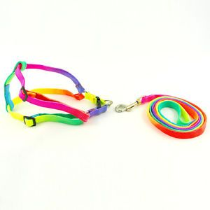 Simple Small Puppy Pet Dog Harness Lead Dog Nylon Dog Harness Leashes Colorful