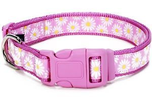 "Douglas Paquette Nylon Dog Collars Leads Harnesses ""Daisy Pink "" Design"