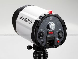300WS Pro Photo Studio Mini Strobe Flash Monolight