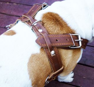 "33 37"" Pulling Leather Dog Harness Padded Studded Brown"