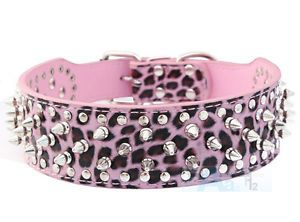 Hot Pink Spiked Dog Collar
