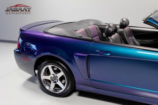 2004 Ford Mustang Cobra Convertible Mystichrome Only 8 486 Miles 1 Owner RARE