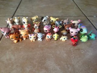 Lot of 30 Littlest Pet Shop Pets Dogs Cats Horses Bugs Bears Frogs Lizard Pig