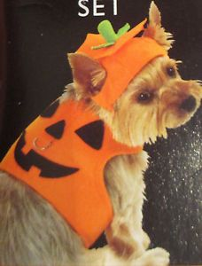 New Pumpkin Halloween Dog Costume Body Harness Hat Set for Dogs Sz Small