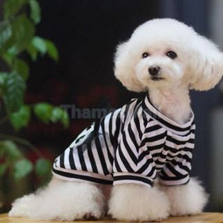Pet Dog Black Striped Shirt Tee T Shirt Clothing Apparel w Cute Skull Size M