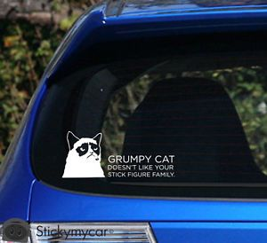 Grumpy Cat Doesn'T Like Your Stick Figure Family Car Decal Sticker Stick Family