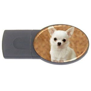 Chihuahua Dog Cute USB Flash Drive Oval 4 GB USB 2 0 Great Memory Drive New