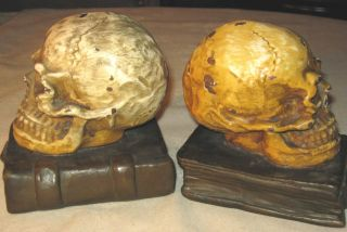 Antique Medical Doctor Office Darwin Skull Art Statue Sculpture Bronze Bookends