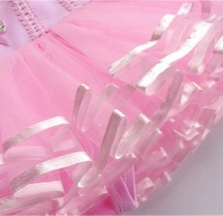 Girls Leotard Ballet Dance Dress Tutu Skirt Pink 2T 3T