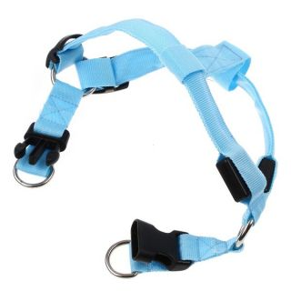 Glow LED Flashing Light 3 Mode Safety Dog Pet Belt Harness Leash Tether Blue