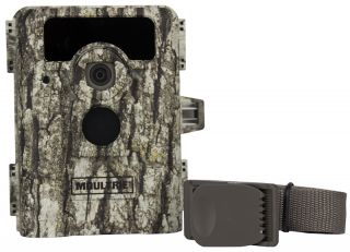 2 Moultrie Game Spy D 555i No Glow Infrared Digital Trail Hunting Cameras 8MP
