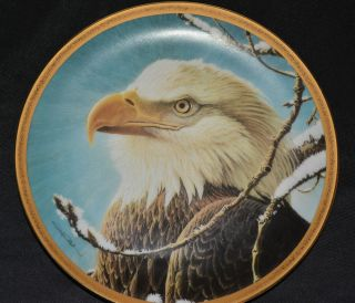 Rulers of The Sky Bald Eagle or Bird Plate Hamilton Collection John Pitcher