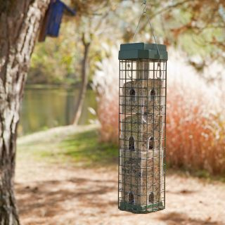 Perky Pet Evenseed Squirrel Dilemma Bird Feeder   Bird Feeders