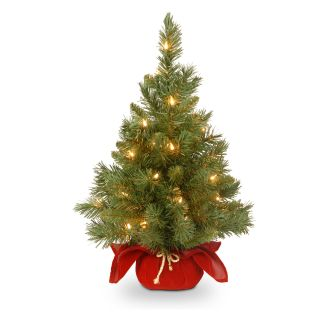 2 ft. Majestic Fir Pre Lit Tree with Burgundy Cloth Bag   Christmas Trees