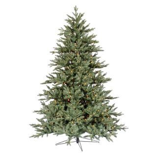 Blue Noble Fir Pre lit LED Christmas Tree   Christmas